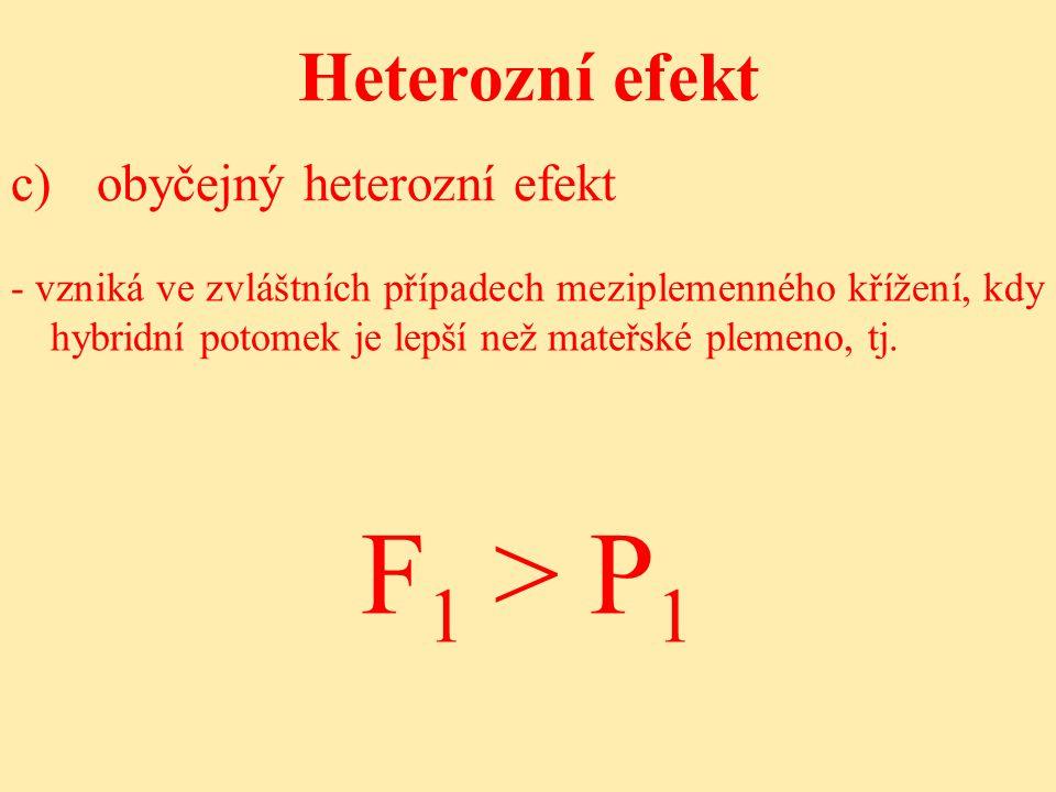 Heterozní efekt - vzniká ve zvláštních případech meziplemenného křížení, kdy hybridní potomek je lepší než mateřské plemeno, tj.