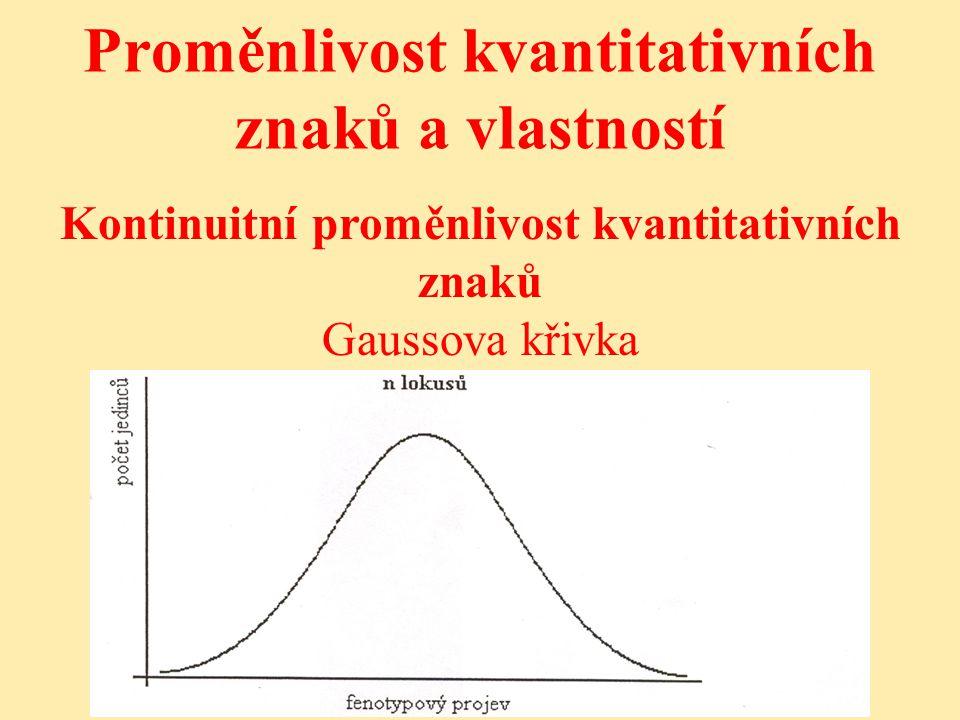 Proměnlivost kvantitativních znaků a vlastností Kontinuitní proměnlivost kvantitativních znaků Gaussova křivka