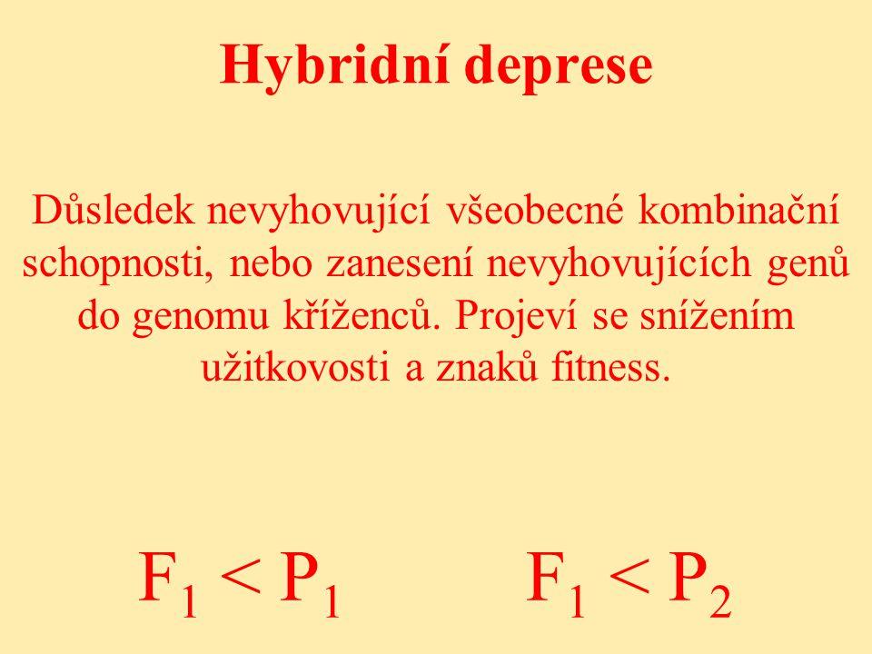 Hybridní deprese Důsledek nevyhovující všeobecné kombinační schopnosti, nebo zanesení nevyhovujících genů do genomu kříženců.