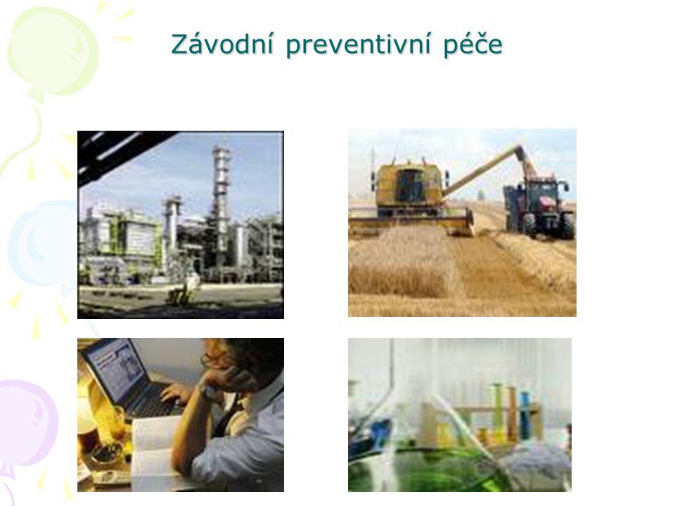 Formy zajištění ZPP 1.