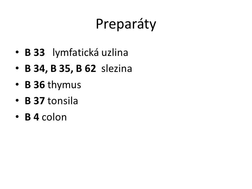 Preparáty B 33 lymfatická uzlina B 34, B 35, B 62 slezina B 36 thymus B 37 tonsila B 4 colon