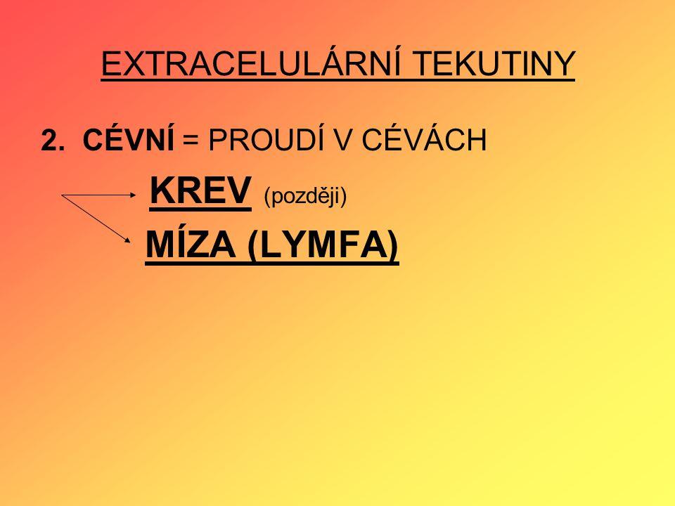 EXTRACELULÁRNÍ TEKUTINY 2. CÉVNÍ = PROUDÍ V CÉVÁCH KREV (později) MÍZA (LYMFA)