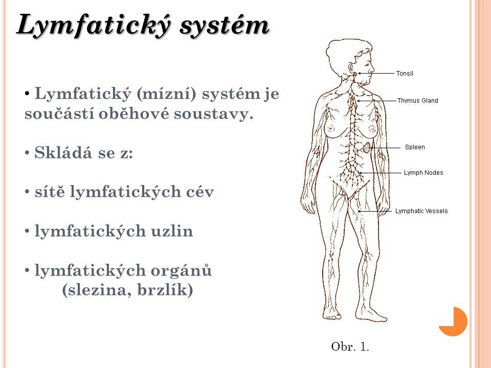 Lymfatický systém Obr. 1. Lymfatický (mízní) systém je součástí oběhové soustavy. Skládá se z: sítě lymfatických cév lymfatických uzlin lymfatických o