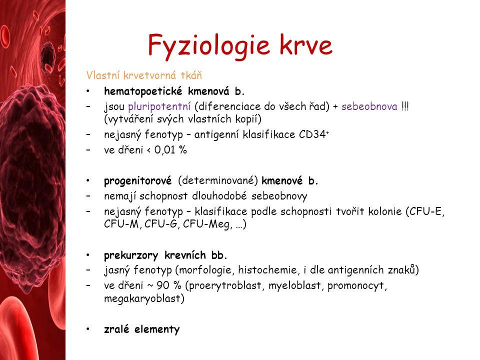 Fyziologie krve Vlastní krvetvorná tkáň hematopoetické kmenová b. –jsou pluripotentní (diferenciace do všech řad) + sebeobnova !!! (vytváření svých vl
