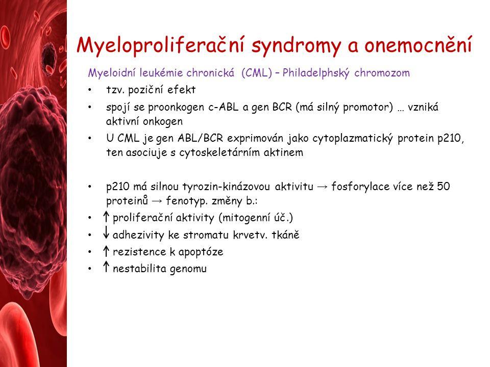 Myeloproliferační syndromy a onemocnění Myeloidní leukémie chronická (CML) – Philadelphský chromozom tzv. poziční efekt spojí se proonkogen c-ABL a ge