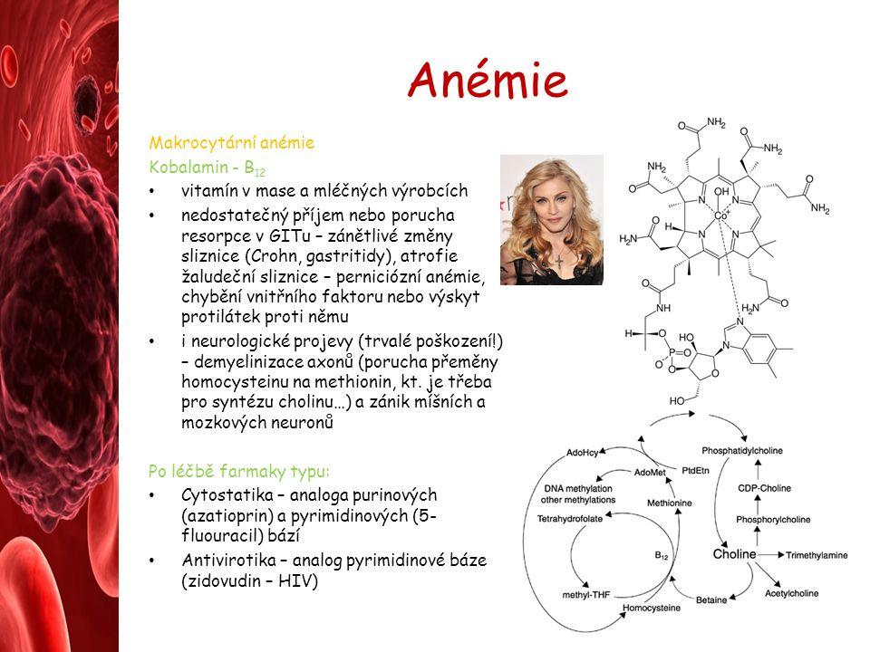 Anémie Makrocytární anémie Kobalamin - B 12 vitamín v mase a mléčných výrobcích nedostatečný příjem nebo porucha resorpce v GITu – zánětlivé změny sli