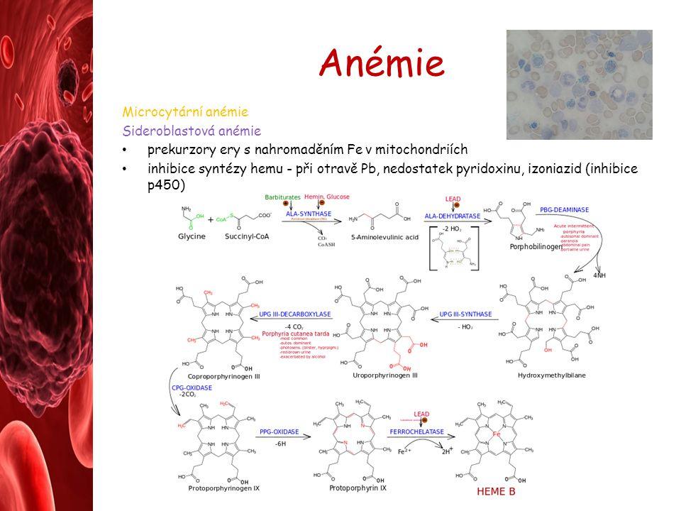 Anémie Microcytární anémie Sideroblastová anémie prekurzory ery s nahromaděním Fe v mitochondriích inhibice syntézy hemu - při otravě Pb, nedostatek p