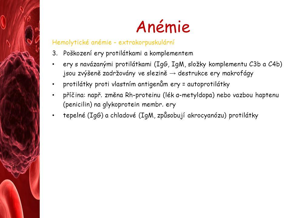 Anémie Hemolytické anémie - extrakorpuskulární 3. Poškození ery protilátkami a komplementem ery s navázanými protilátkami (IgG, IgM, složky komplement