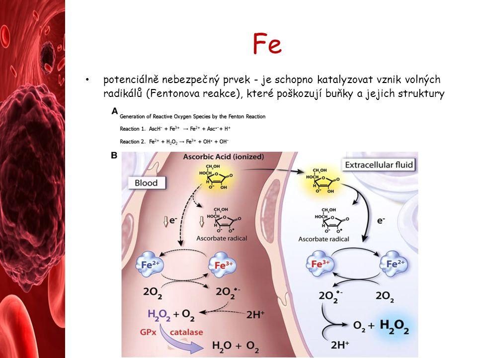Fe potenciálně nebezpečný prvek - je schopno katalyzovat vznik volných radikálů (Fentonova reakce), které poškozují buňky a jejich struktury