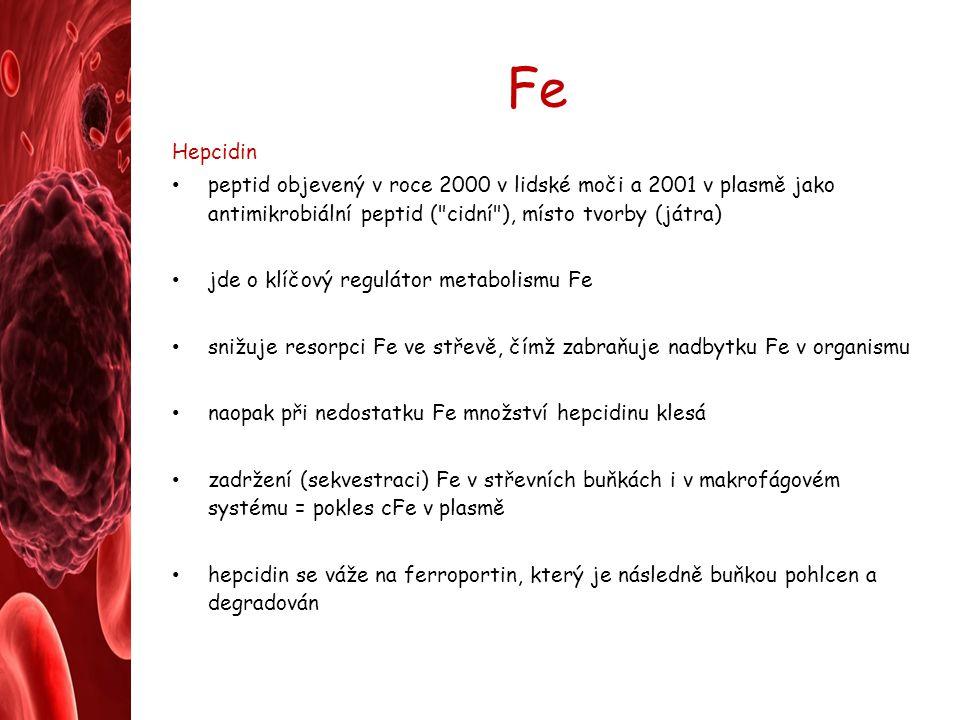 Fe Hepcidin peptid objevený v roce 2000 v lidské moči a 2001 v plasmě jako antimikrobiální peptid (