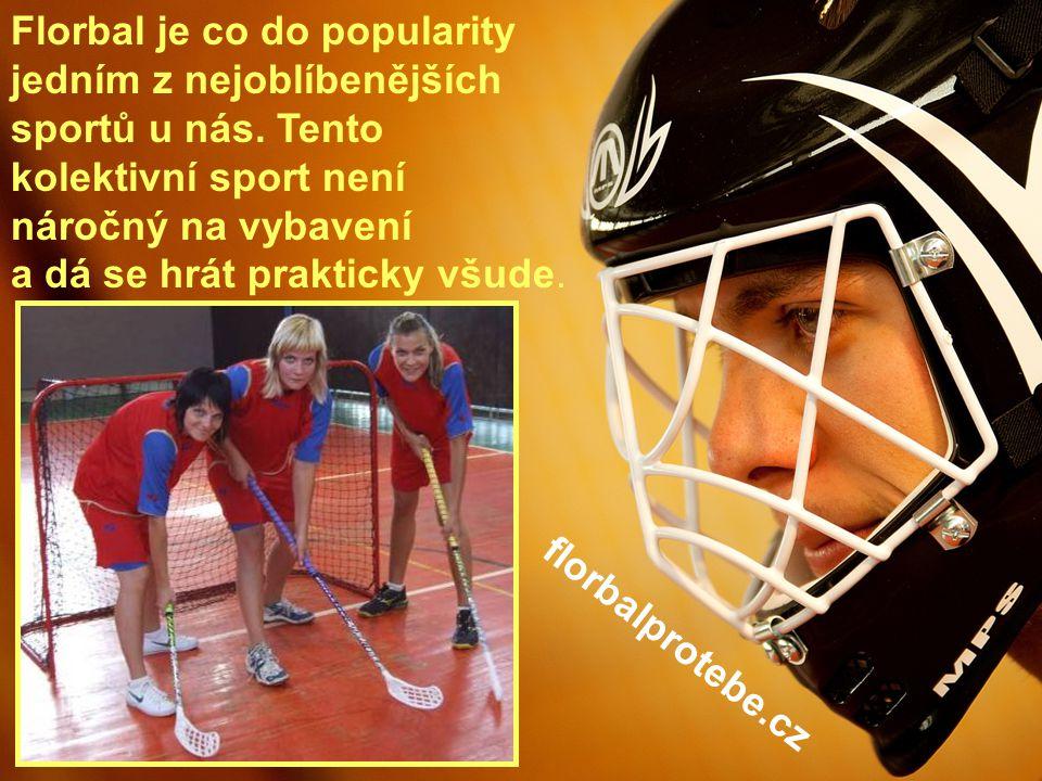 1 Florbal je co do popularity jedním z nejoblíbenějších sportů u nás.
