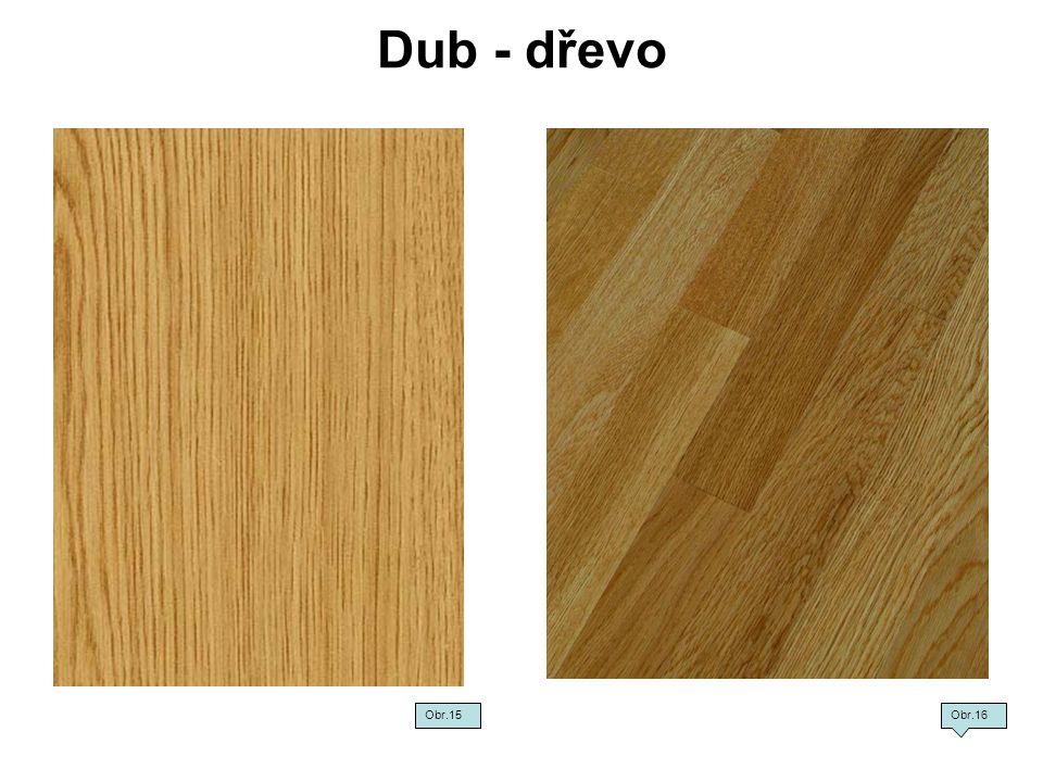 Dub - dřevo Obr.15Obr.16