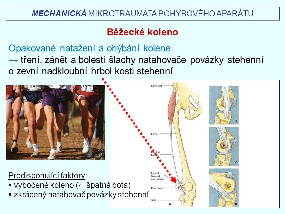 MECHANICKÁ MIKROTRAUMATA POHYBOVÉHO APARÁTU Běžecké koleno Opakované natažení a ohýbání kolene → tření, zánět a bolesti šlachy natahovače povázky steh