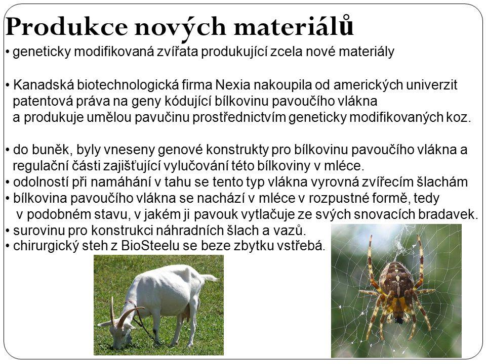 Produkce nových materiál ů geneticky modifikovaná zvířata produkující zcela nové materiály Kanadská biotechnologická firma Nexia nakoupila od amerických univerzit patentová práva na geny kódující bílkovinu pavoučího vlákna a produkuje umělou pavučinu prostřednictvím geneticky modifikovaných koz.