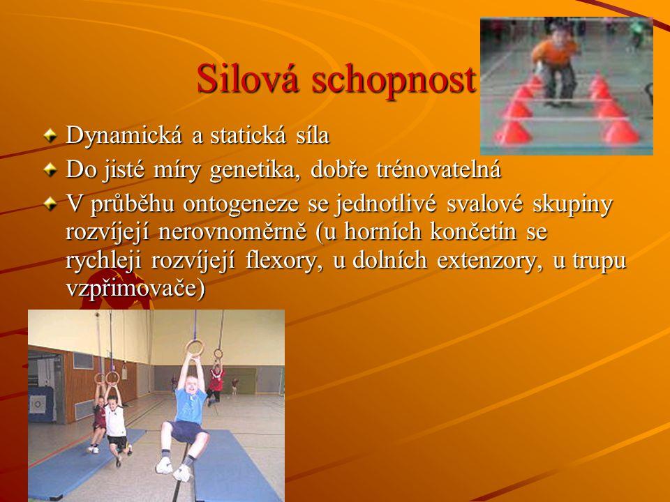 Ml.šk.věk – posilovat především velké svalové skupiny, které zajišťují SDT, nejlépe přirozenými činnostmi – běh, skok, hod, šplh, gymnastická cvičení, úpolová cvičení – především rychlostně silová cvičení Silová schopnost