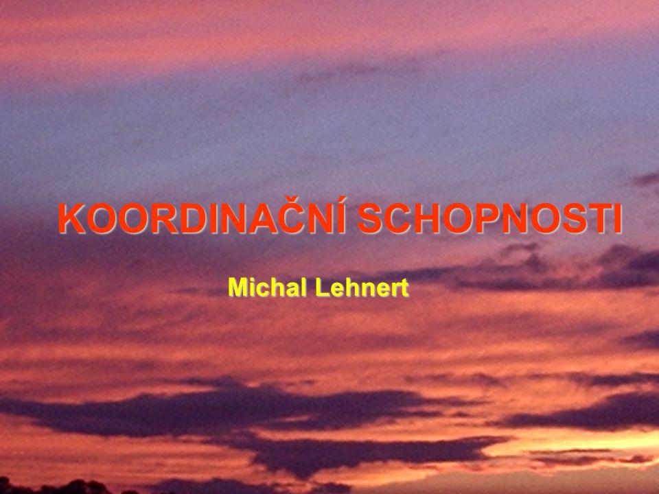 KOORDINAČNÍ SCHOPNOSTI Michal Lehnert