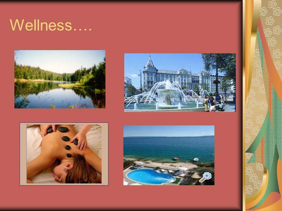Využití wellness služeb