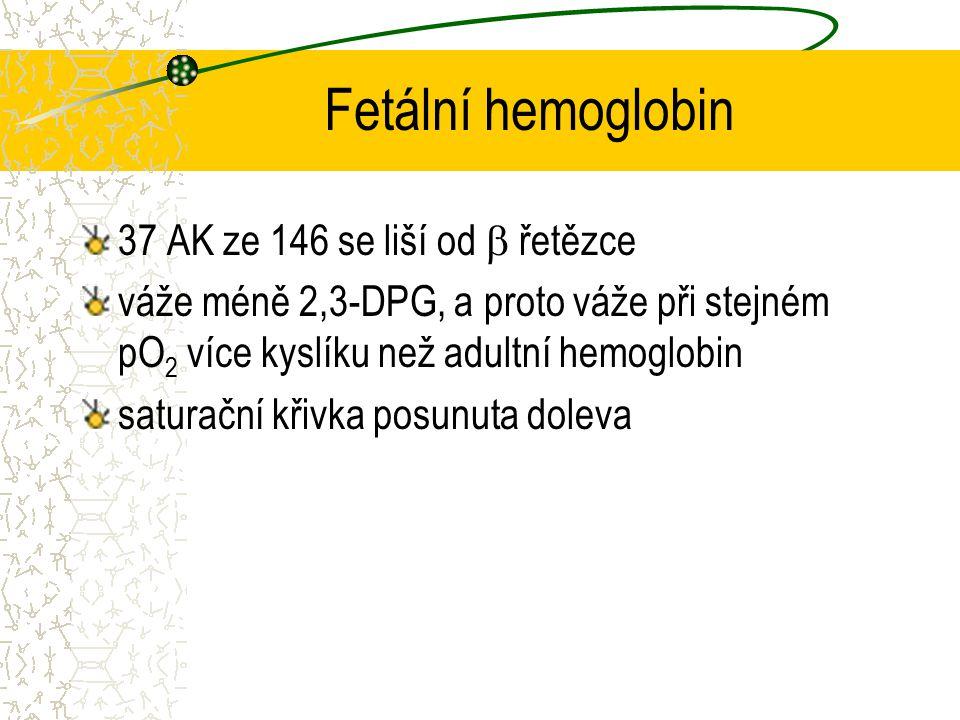 Fetální hemoglobin 37 AK ze 146 se liší od  řetězce váže méně 2,3-DPG, a proto váže při stejném pO 2 více kyslíku než adultní hemoglobin saturační kř