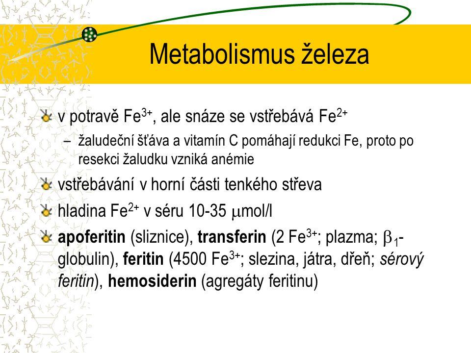 Metabolismus železa v potravě Fe 3+, ale snáze se vstřebává Fe 2+ –žaludeční šťáva a vitamín C pomáhají redukci Fe, proto po resekci žaludku vzniká an