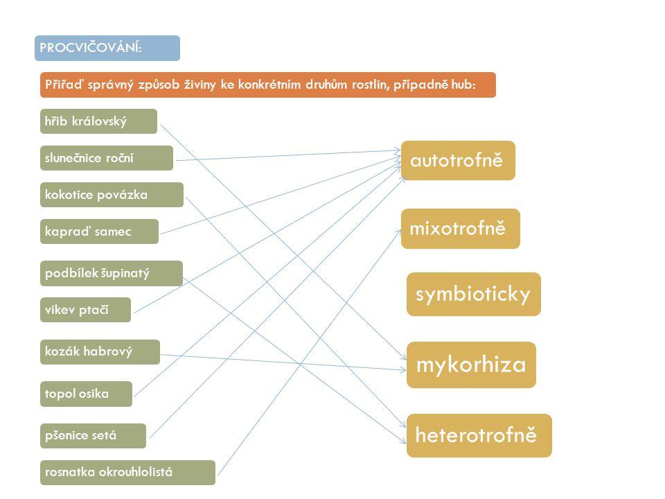 PROCVIČOVÁNÍ:Přiřaď správný způsob živiny ke konkrétním druhům rostlin, případně hub:hřib královskýslunečnice ročníkapraď samecpodbílek šupinatýkokoti