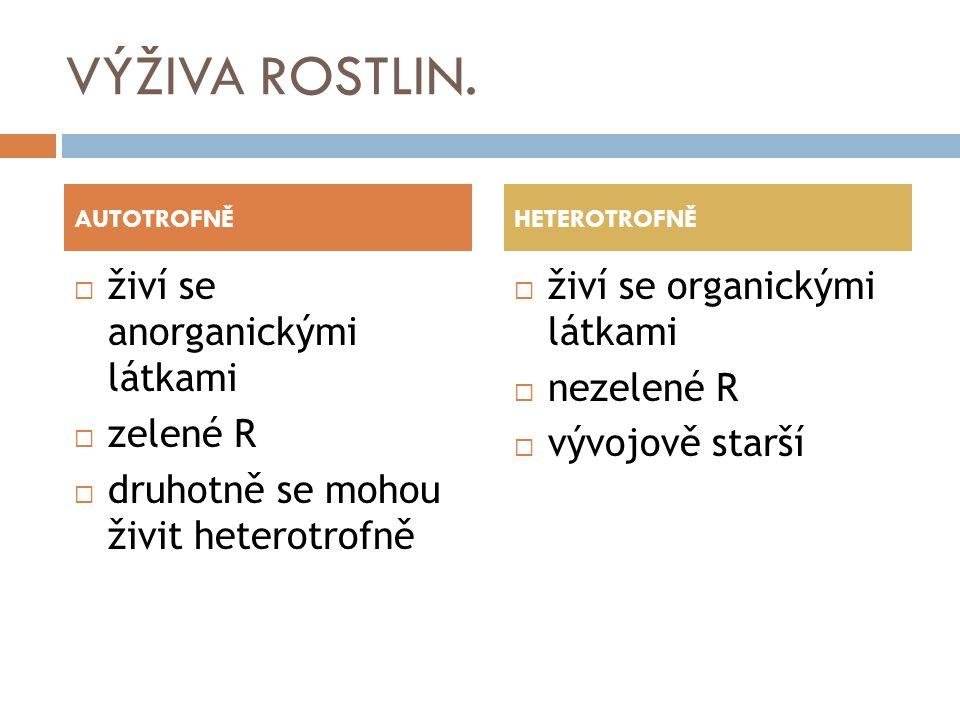 VÝŽIVA ROSTLIN. AUTOTROFNĚ  živí se anorganickými látkami  zelené R  druhotně se mohou živit heterotrofně HETEROTROFNĚ  živí se organickými látkam