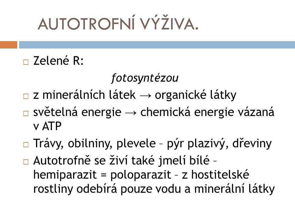 AUTOTROFNÍ VÝŽIVA.  Zelené R: fotosyntézou  z minerálních látek → organické látky  světelná energie → chemická energie vázaná v ATP  Trávy, obilni