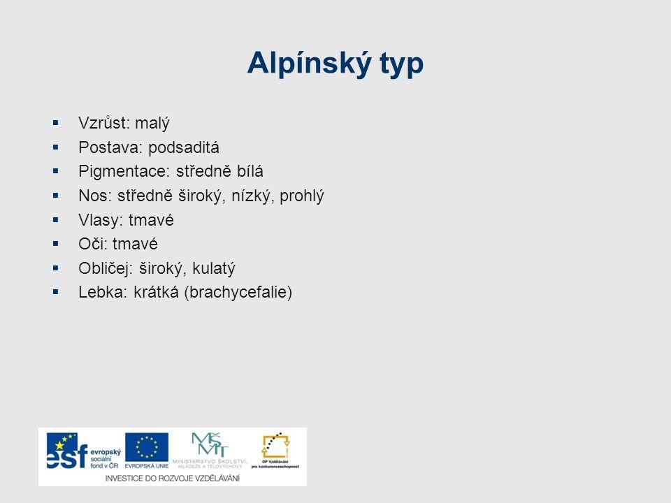 Alpínský typ VVzrůst: malý PPostava: podsaditá PPigmentace: středně bílá NNos: středně široký, nízký, prohlý VVlasy: tmavé OOči: tmavé O
