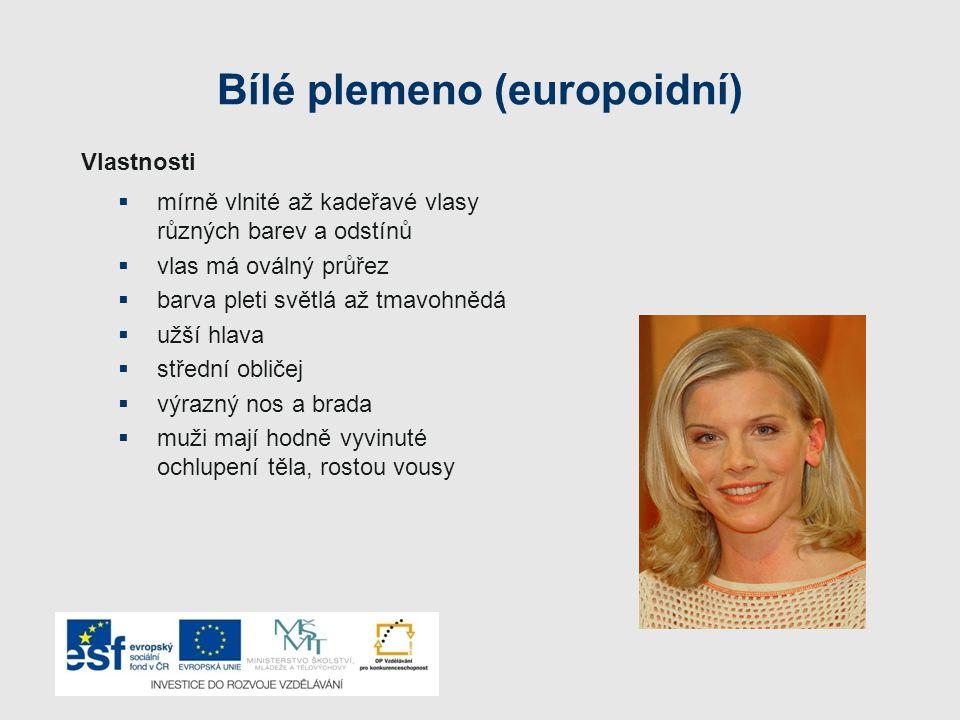 Typy bílé rasy  Baltický  Nordický  Dinárský  Mediterální  Alpinský
