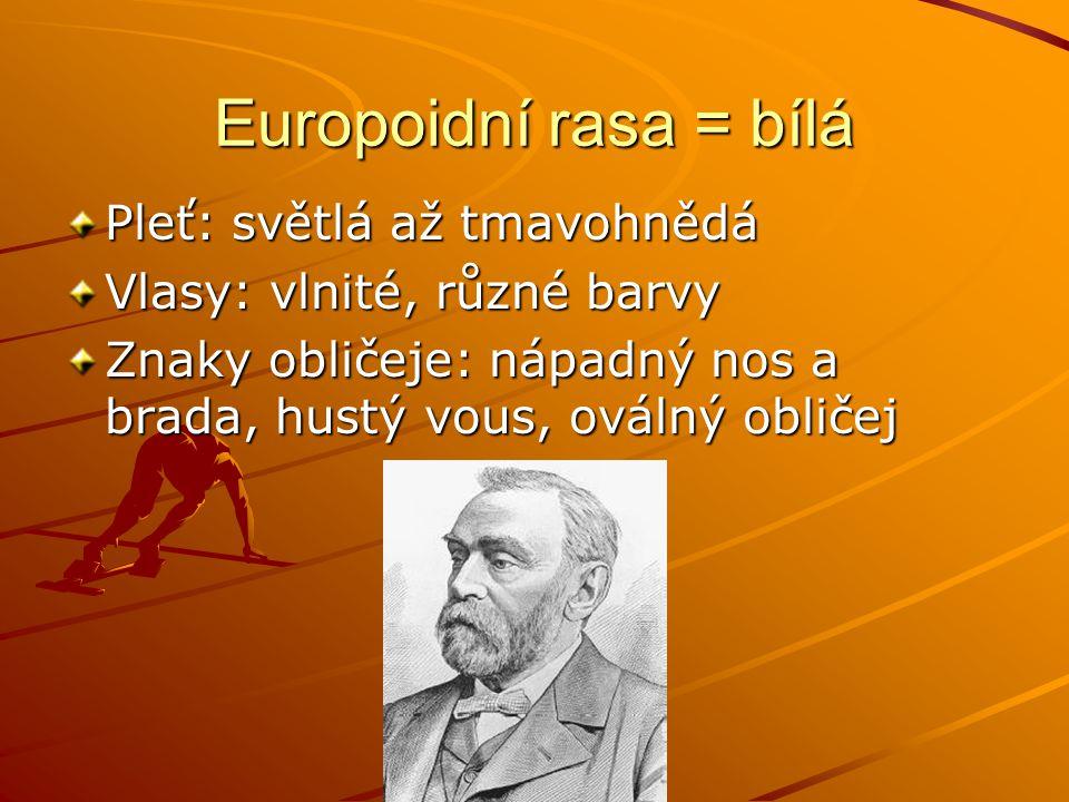 Europoidní rasa = bílá Pleť: světlá až tmavohnědá Vlasy: vlnité, různé barvy Znaky obličeje: nápadný nos a brada, hustý vous, oválný obličej