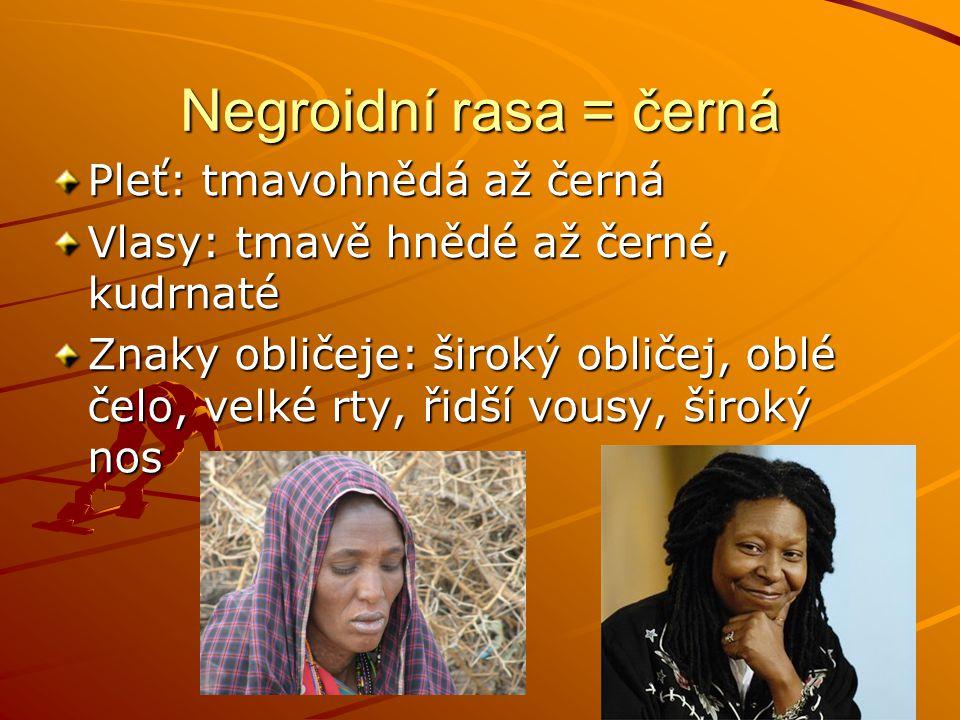 Negroidní rasa = černá Pleť: tmavohnědá až černá Vlasy: tmavě hnědé až černé, kudrnaté Znaky obličeje: široký obličej, oblé čelo, velké rty, řidší vou