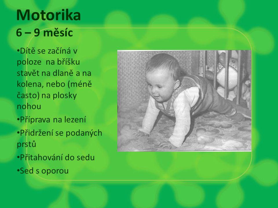 Motorika 6 – 9 měsíc Dítě se začíná v poloze na bříšku stavět na dlaně a na kolena, nebo (méně často) na plosky nohou Příprava na lezení Přidržení se