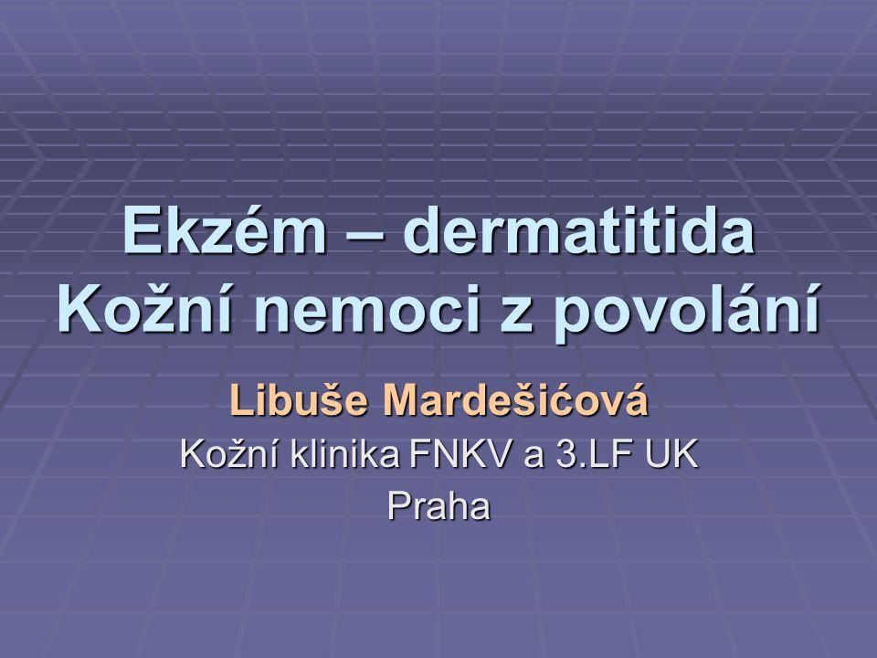 Ekzém – dermatitida Kožní nemoci z povolání Libuše Mardešićová Kožní klinika FNKV a 3.LF UK Praha