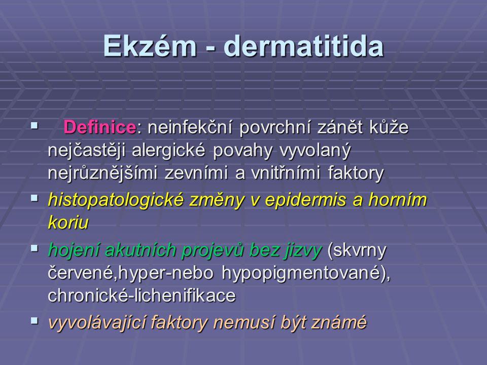 Ekzém - dermatitida  Definice: neinfekční povrchní zánět kůže nejčastěji alergické povahy vyvolaný nejrůznějšími zevními a vnitřními faktory  histop