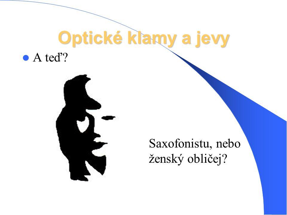 Optické klamy a jevy Kachnu, dívající se doleva, nebo zajíce, dívajícího se doprava …?