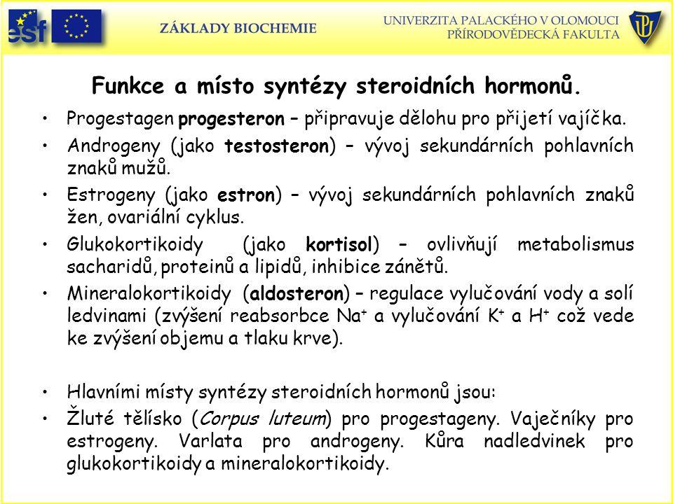 Funkce a místo syntézy steroidních hormonů. Progestagen progesteron – připravuje dělohu pro přijetí vajíčka. Androgeny (jako testosteron) – vývoj seku