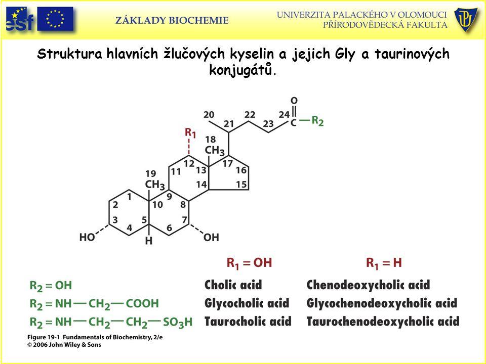 Struktura hlavních žlučových kyselin a jejich Gly a taurinových konjugátů.