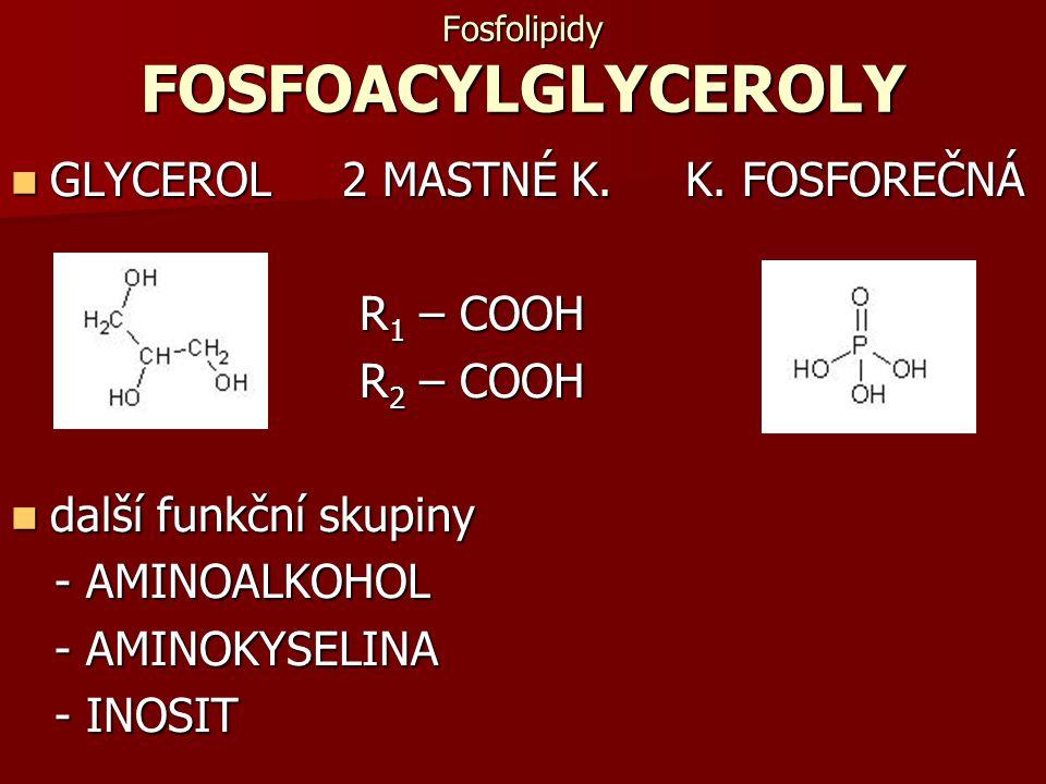 Fosfolipidy FOSFOACYLGLYCEROLY GLYCEROL 2 MASTNÉ K. K. FOSFOREČNÁ GLYCEROL 2 MASTNÉ K. K. FOSFOREČNÁ R 1 – COOH R 1 – COOH R 2 – COOH R 2 – COOH další