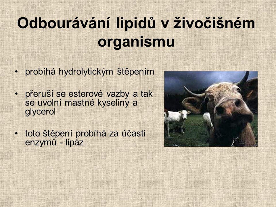 Odbourávání lipidů v živočišném organismu probíhá hydrolytickým štěpením přeruší se esterové vazby a tak se uvolní mastné kyseliny a glycerol toto ště