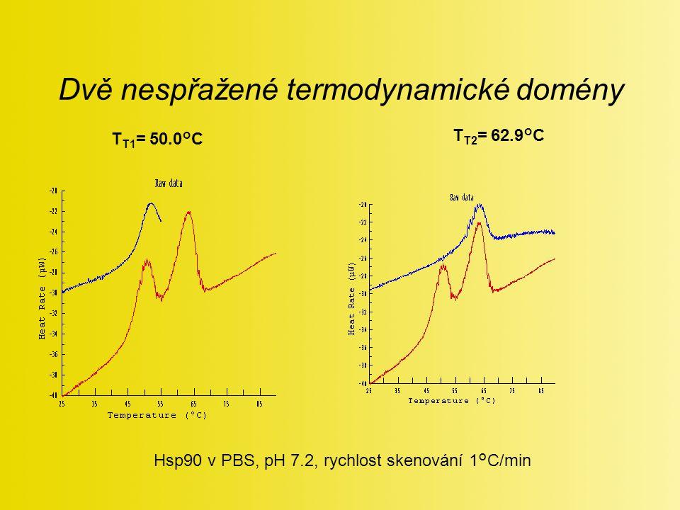 Dvě nespřažené termodynamické domény Hsp90 v PBS, pH 7.2, rychlost skenování 1°C/min T T1 = 50.0°C T T2 = 62.9°C