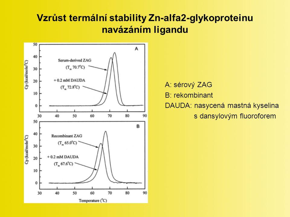 Vzrůst termální stability Zn-alfa2-glykoproteinu navázáním ligandu A: sérový ZAG B: rekombinant DAUDA: nasycená mastná kyselina s dansylovým fluoroforem