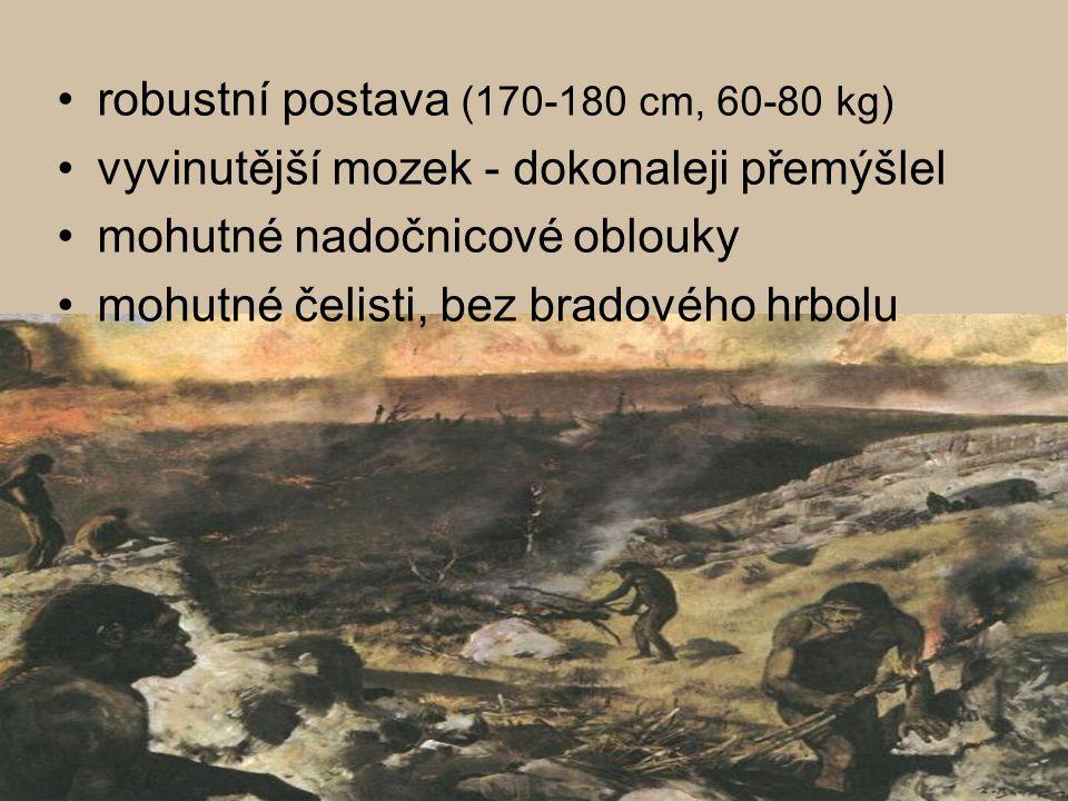 nástroje: úštěpy, hroty, pěstní klíny živil se sběrem a lovem (kolektivní lov velkých zvířat) využíval více oheň obýval jeskyně, jednoduché chaty (v Africe, Asii, Evropě) dorozumíval se dokonalejší řečí