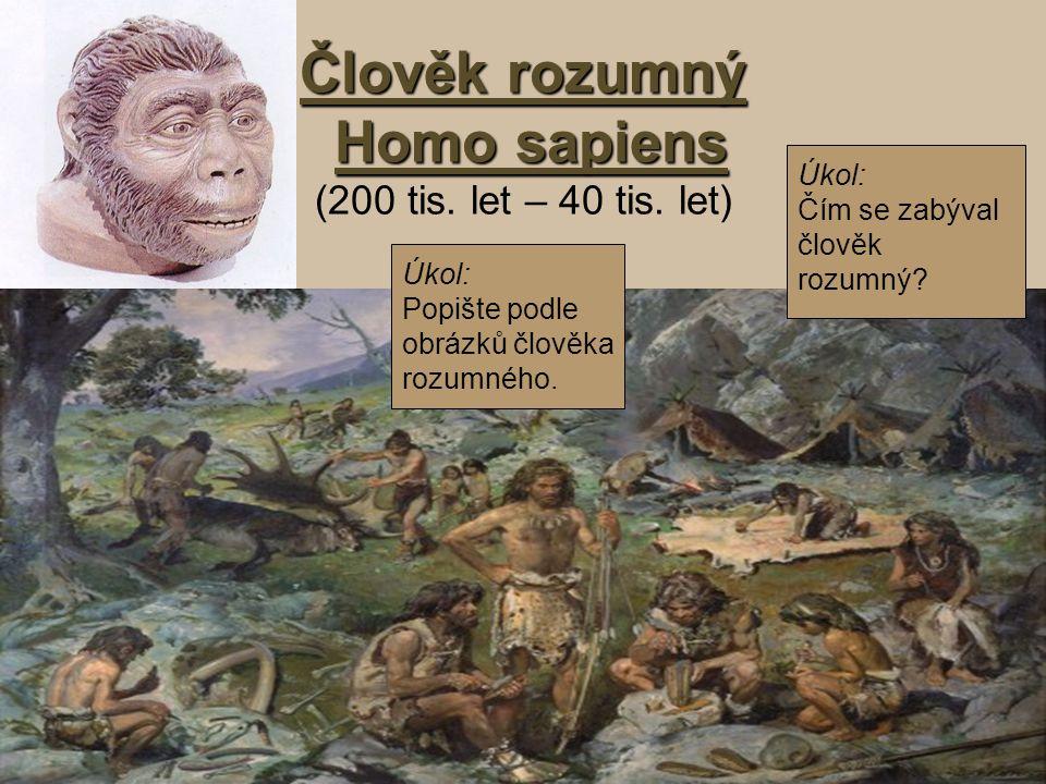 Člověk rozumný Homo sapiens Člověk rozumný Homo sapiens (200 tis. let – 40 tis. let) Úkol: Popište podle obrázků člověka rozumného. Úkol: Čím se zabýv