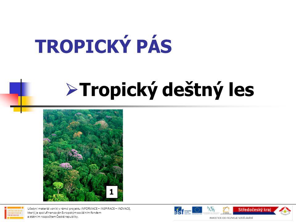 TROPICKÝ PÁS  Tropický deštný les Učební materiál vznikl v rámci projektu INFORMACE – INSPIRACE – INOVACE, který je spolufinancován Evropským sociálním fondem a státním rozpočtem České republiky.