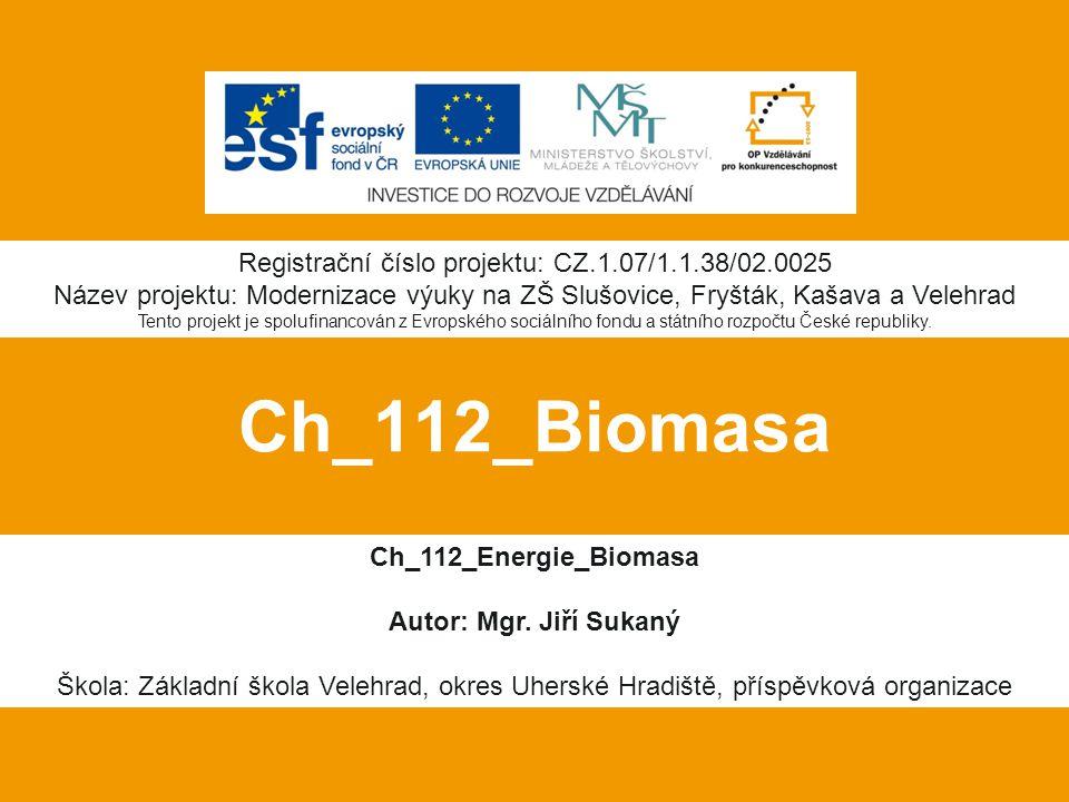 Ch_112_Biomasa Ch_112_Energie_Biomasa Autor: Mgr.