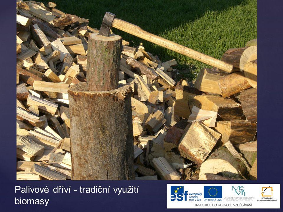 Palivové dříví - tradiční využití biomasy