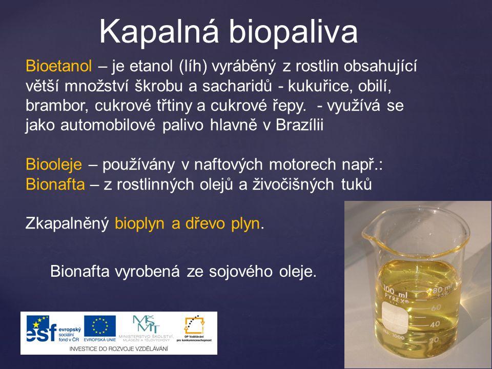 Kapalná biopaliva Bioetanol – je etanol (líh) vyráběný z rostlin obsahující větší množství škrobu a sacharidů - kukuřice, obilí, brambor, cukrové třtiny a cukrové řepy.