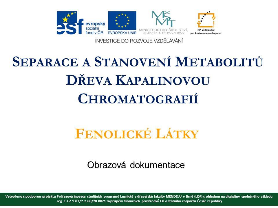 Vytvořeno s podporou projektu Průřezová inovace studijních programů Lesnické a dřevařské fakulty MENDELU v Brně (LDF) s ohledem na disciplíny společného základu reg.