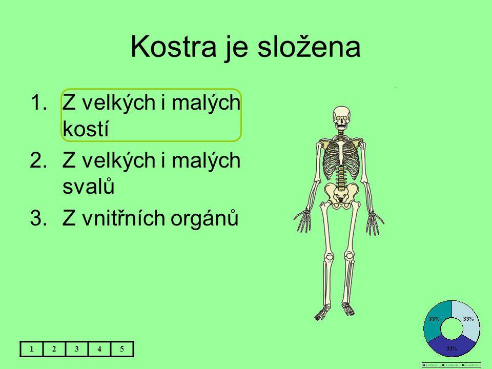 Kostra je složena 1.Z velkých i malých kostí 2.Z velkých i malých svalů 3.Z vnitřních orgánů 12345
