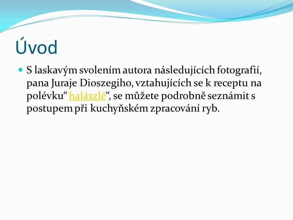 """Úvod S laskavým svolením autora následujících fotografií, pana Juraje Dioszegiho, vztahujících se k receptu na polévku"""" halászlé"""", se můžete podrobně"""