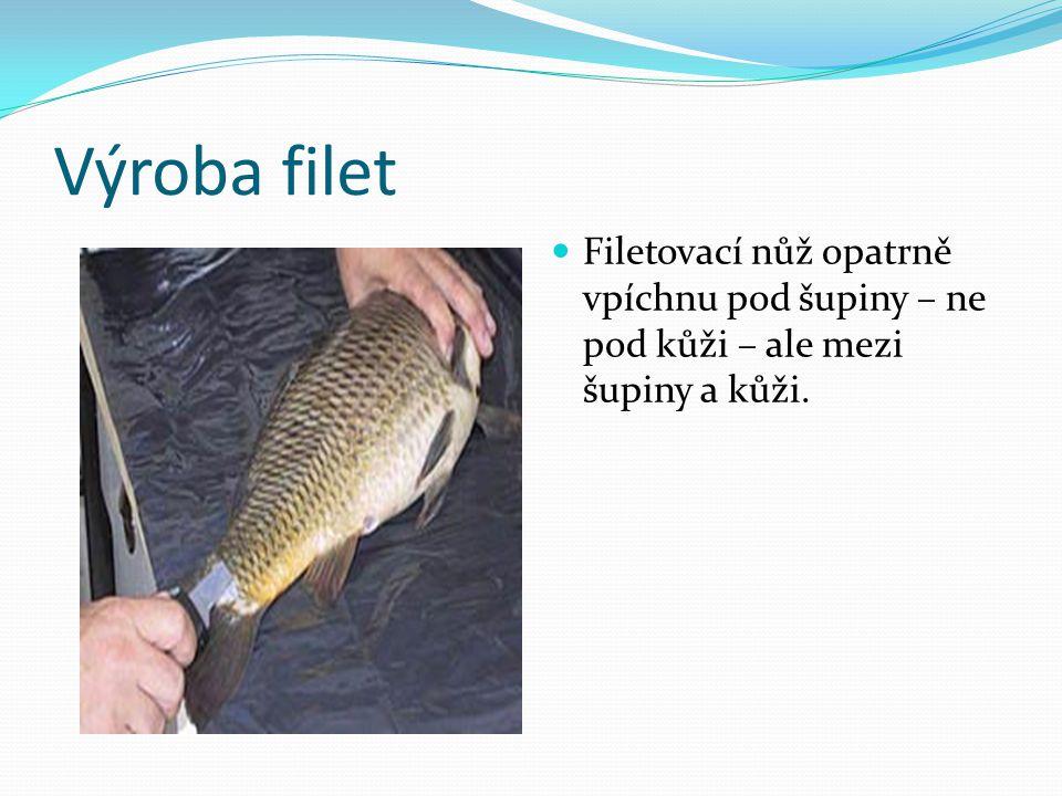 Výroba filet Filetovací nůž opatrně vpíchnu pod šupiny – ne pod kůži – ale mezi šupiny a kůži.